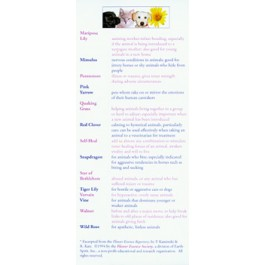 Animals & Flower Essences flyer