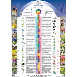 Healing Herbs poster; may ship separately, if so, additional fees apply