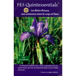 FES Quintessentials brochure - French language