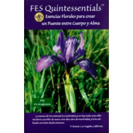 FES Quintessentials brochure - Spanish language