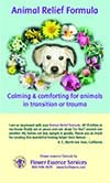 Animal Relief Formula™ Flyer