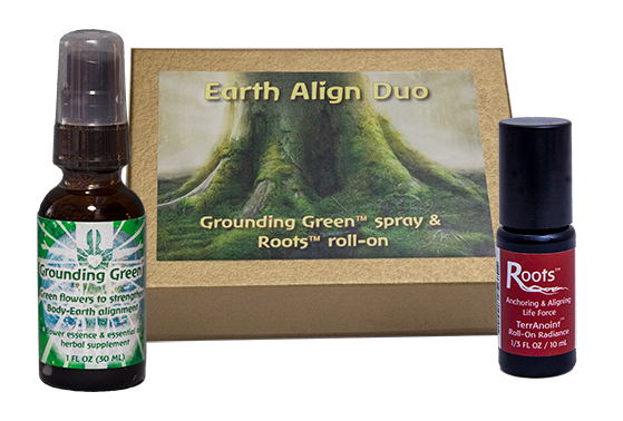 Earth Align Duo