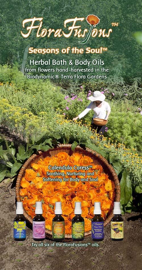 FloraFusions brochure
