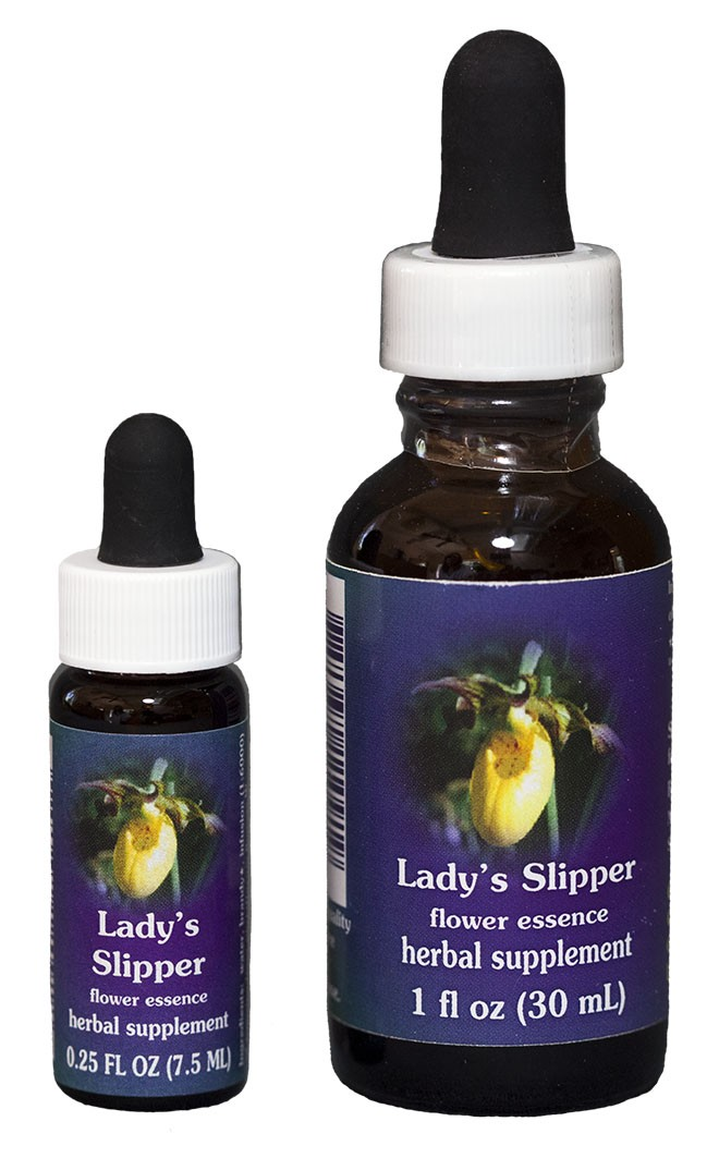 Lady's Slipper