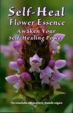 Self-Heal flower essence brochure