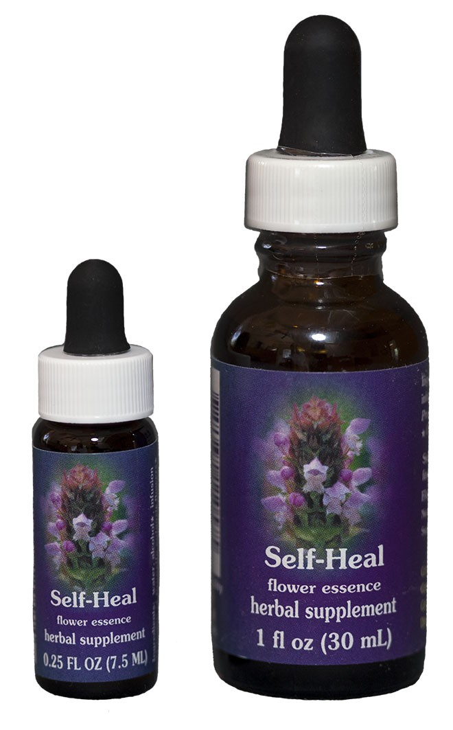 Self-Heal Flower Essence