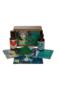 Holly-Day Gift Set
