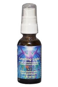 Leading Light