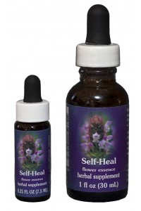 Self-Heal Flower Essence
