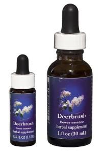 Deerbrush